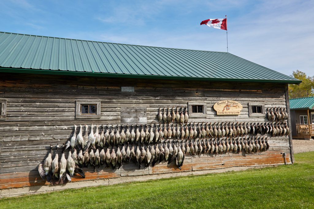 Hunting Waterfowl in Manitoba