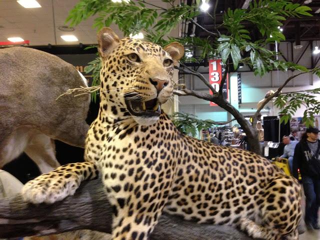 SCI exhibitor mounts 4