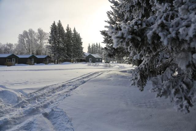 Getting prettier as winter goes on.. 3